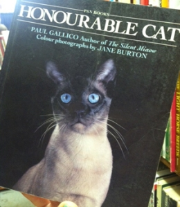 Honourable Cats
