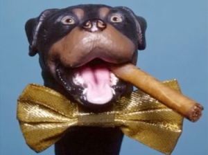 Triumph, the Insult Comic Dog