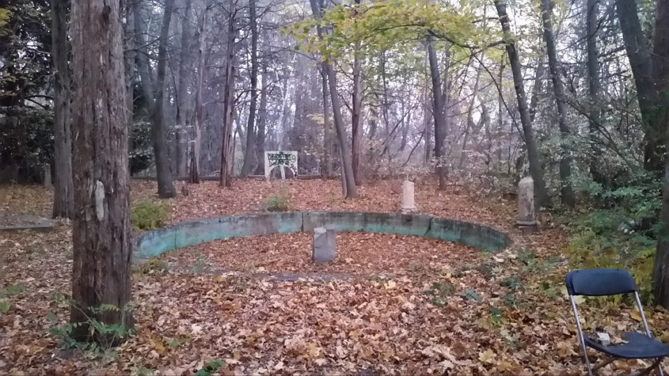 An abandoned pool at the Olmsted estate, Massachusetts.