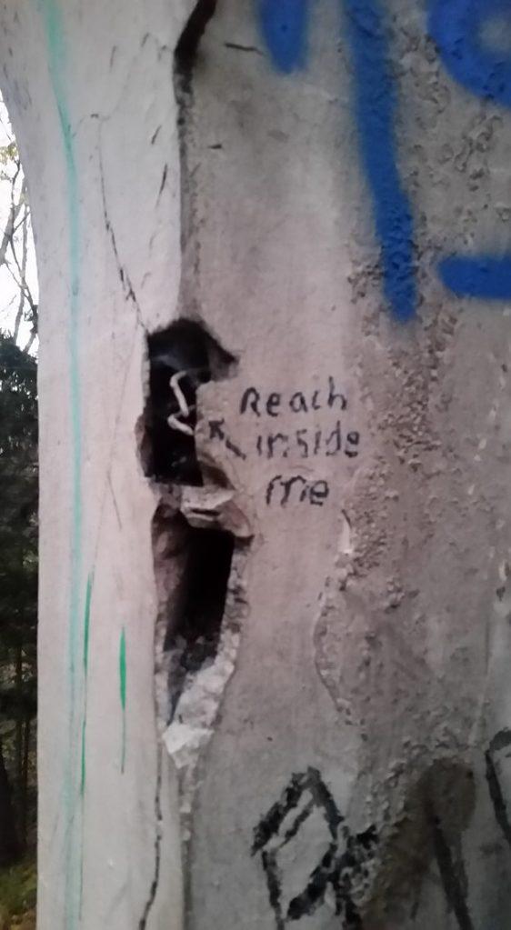 """Reach Inside Me""-abandoned Olmsted estate, Massachusetts."