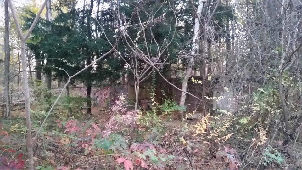 Abandoned Olmsted estate, Massachusetts.