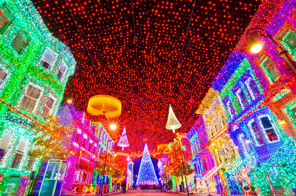 Osborne Family Spectacle of Lights, Disney World, Hollywood Studios