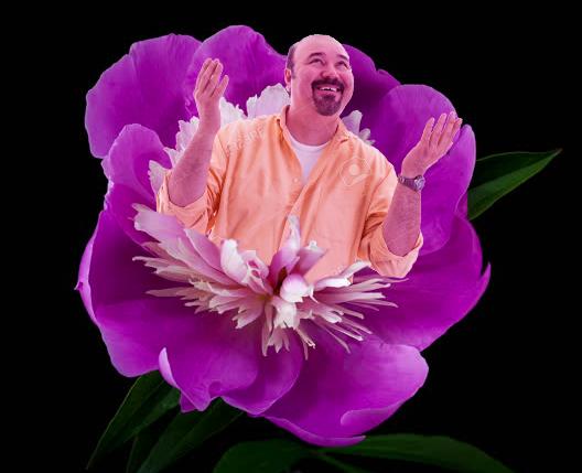 Bob blossoms